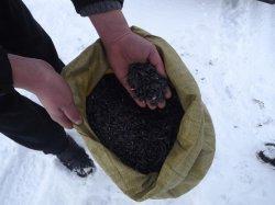Луганские пограничники задержали мужчину с мешками семечек у границы с Россией