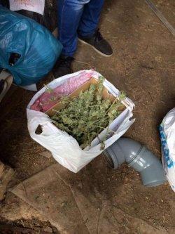 В Одесской области ликвидировали нарколабораторию