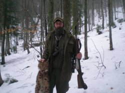 В Карпатах лесники застрелили краснокнижную рысь