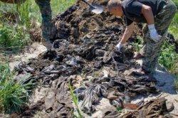 На Днепропетровщине выкопали мешки с вещами погибших бойцов АТО